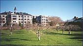 Ochard Winter, 1999